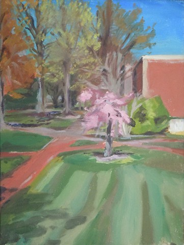"Cherry Blossoms Near Andrews Hall. 16 x 12"". Oil on Canvas. March 2010. William and Mary"