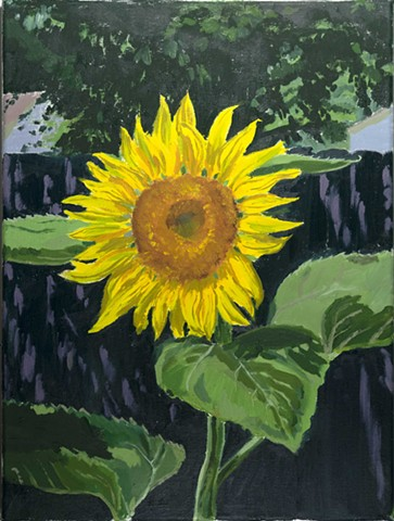 Sunflower Backyard Oil Paint on Canvas Yellow Flower Leaves Shade Suburbs Backyard