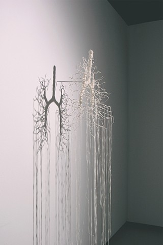 branches and lungs