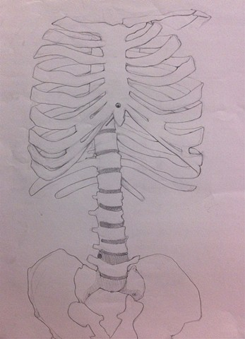 Skeleton Contour | Graphite