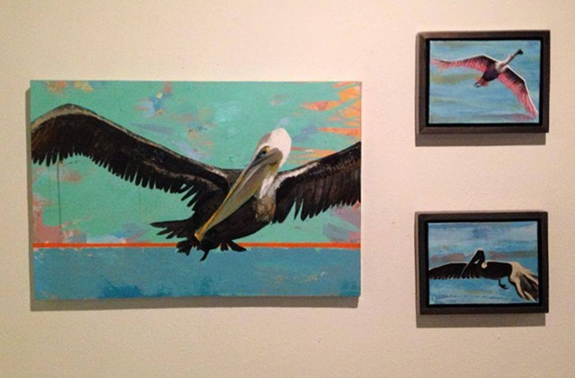 Brown Pelican with smaller birds, exhibit at Ballet Academie