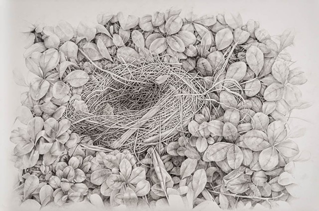Nest in Leaves