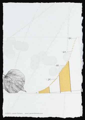 drawing of leaf, U.S. healthcare spending, particle physics tracks, and dots by Lauren Gohara