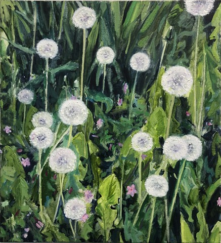 still life, landscape, dandelions, flowers, contemporary painting