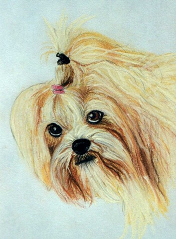 Pet Portrait Painting by Diane Daversa, llhasa dog painting, diane daversa art, dog art
