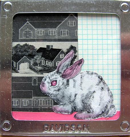 Rabbit Plans
