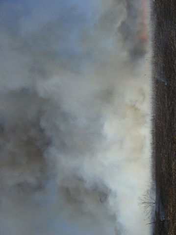 Smoke, Northeastern Illinois 1
