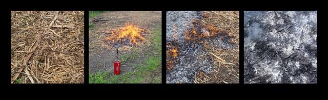 This Is Not a Garden- Prescribed Burn