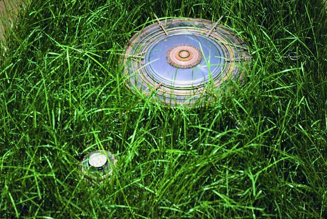 Crop Circle (detail)