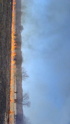 Marsh Fire #3