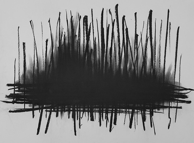 Marsh/Thicket