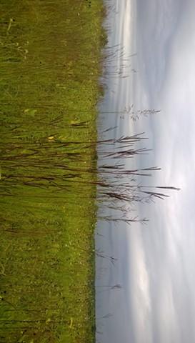 Prairie in Lake County