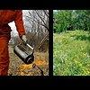 This Is Not a Garden- Buckthorn, Brush Pile, Prescribed Burn, Summer Prairie