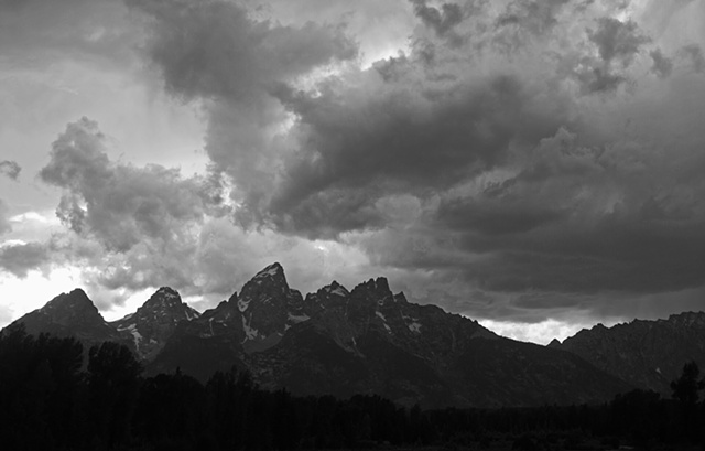 Black and White Tetons