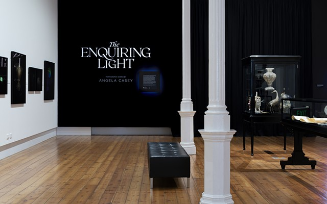 Angela casey artist photographer qvmag the enquiring light tasmania gallery art gothic still life installation