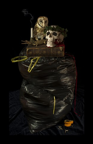 Angela Casey artist photography art still life australia tasmania rubbish masked owl gothic gallery art