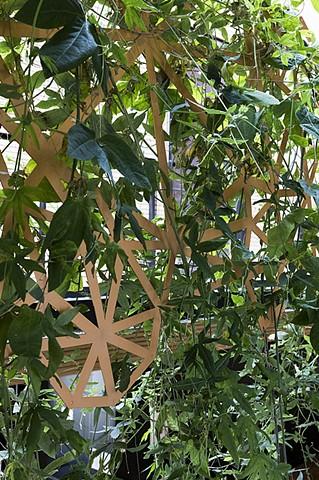 architecture, plant, trellise, aluminum