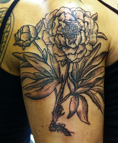 peony tattoo. rus laich. fucking awesome.