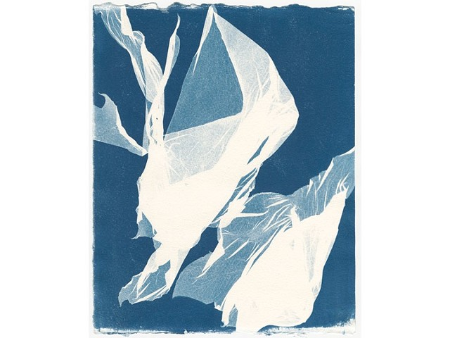 Cyanotype Series