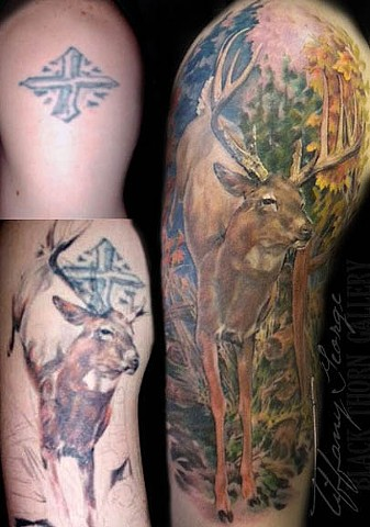 Whitetail Deer Coverup