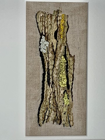 Tree Trunk with Lichen (w/o frame)
