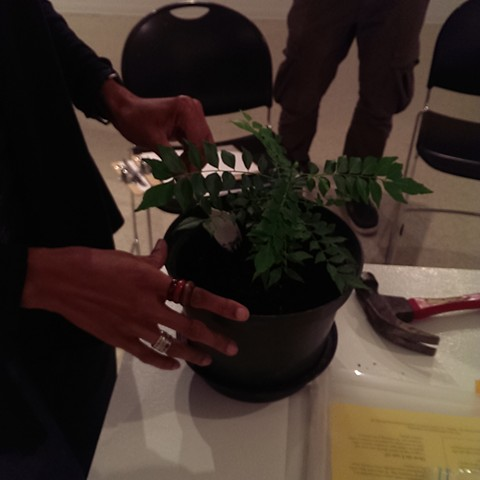 PERCENT FOR GREEN Community workshop- vermiculture composting