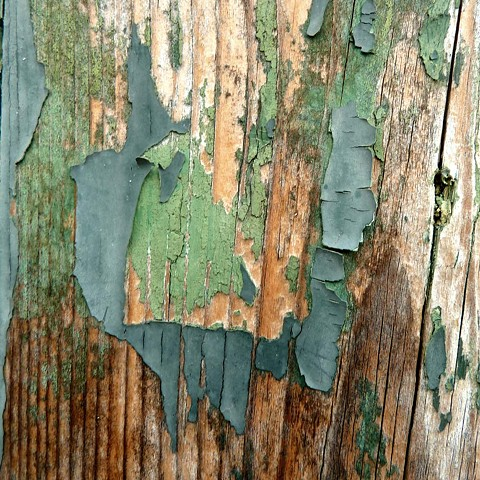 Peeling Wood Wall - Venice