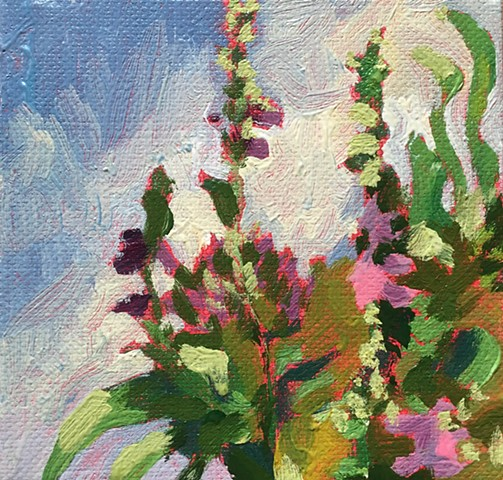 Foxgloves Swaying
