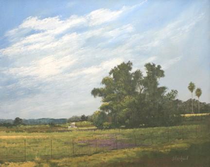 Florida Levee Acrylic painting Scott Hiestand