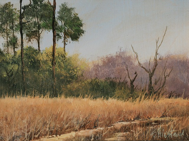 Pine Trail acrylic painting Wekiva Springs Florida