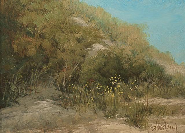 Florida sand dunes Grayton State Park Acrylic painting Scott Hiestand