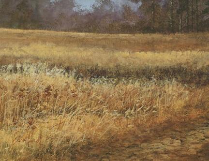 Yellow Fielda Wekiva State Park Acrylic painting Scott Hiestand