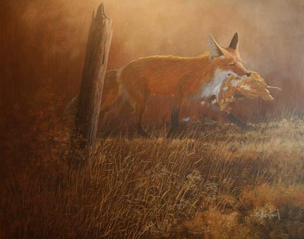 Florida Red Fox Acrylic painting Scott Hiestand