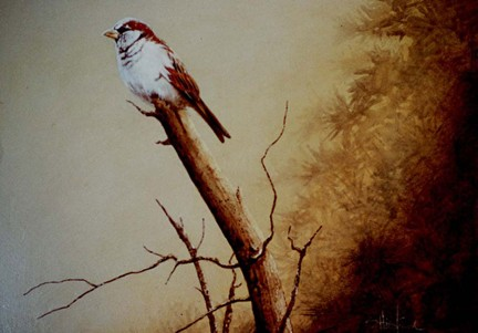 Sparrow painting Acrylic Scott Hiestand