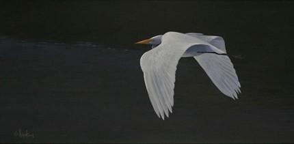 Egret florida acrylic scott hiestand