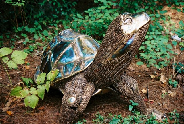 Bronze Turtle sculpture by Thomas Prochnow