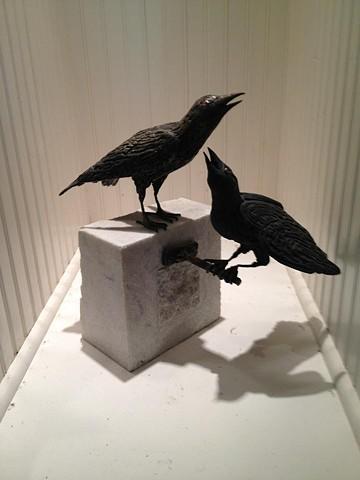 Bronze Grackles by Thomas Prochnow