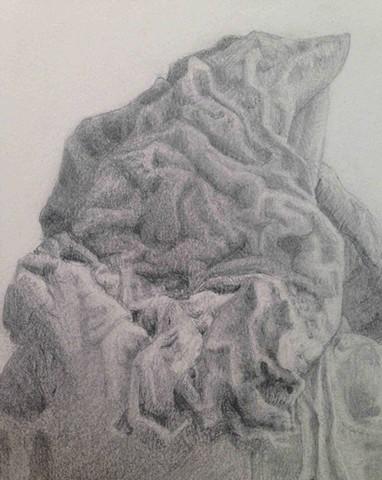 Lauren Pellerito, Lauren Pellergrino, artist, art, peach pit, wrinkles