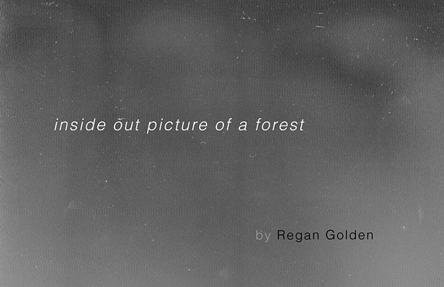 """Inside Out Picture of a Forest,"" published by Drawn Lots Press, edition of 25."