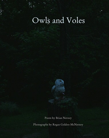 Artist book about owls, Brian Nerney, Regan Golden-McNerney, Drawn Lots Press