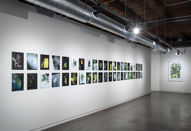 Installation View, Selection of The Prairie Constructs at Soo Visual Art Center.   image credit: Rik Sferra