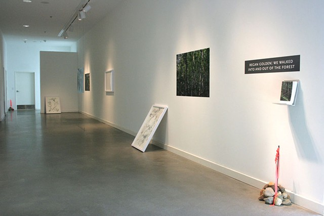 "Installation view, ""We walked into and out of the forest,"" Rochester Art Center."