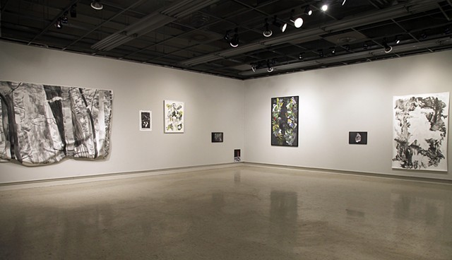 Installation View, Groundswell.