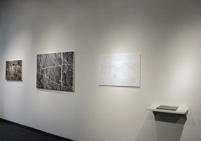 "Installation View, ""At the Edge of an Unfamiliar Forest"""