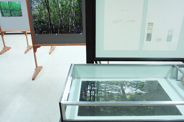 "Installation View, ""We've been to this site."" (View of left front display cases)"