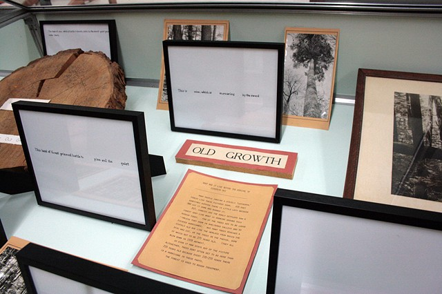 "Installation View, ""We've been to this site."" (Detail of display case on right side at entry)"