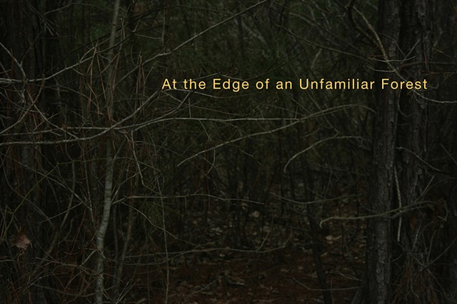 "Cover, ""At the Edge of an Unfamiliar Forest,"" published by Drawn Lots Press"