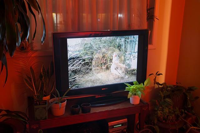 THE STIGMA FOG SAINT Wards off Extinction