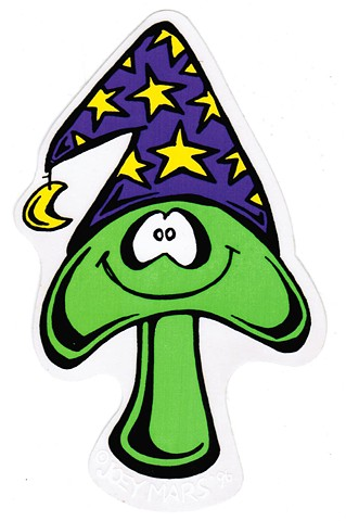 Merlin the magic Mushroom by Joey Mars