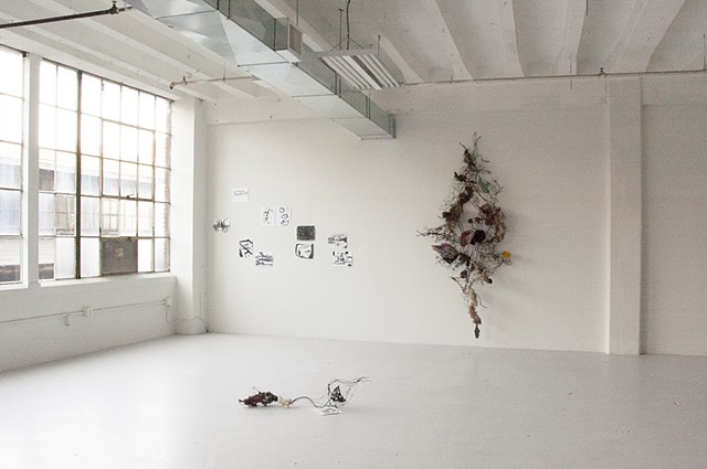 From the Womb of Life Installation View